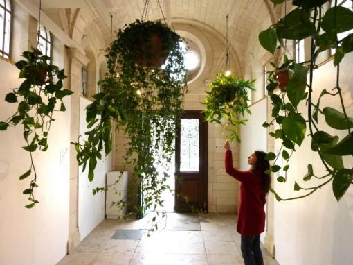 Akousmaflore. Parc Floral de la Source- Orléans (FR). Courtesy of scenocosme : Grégory Lasserre & Anaïs met den Ancxt.