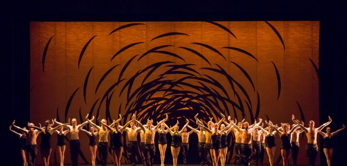 Scottish Ballet Company in Emergence by Crystal Pite. Photo © Andy Ross