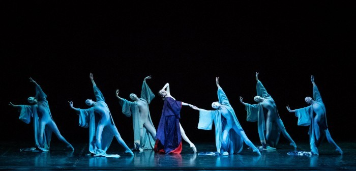 The Kabuki © Ashley Taylor